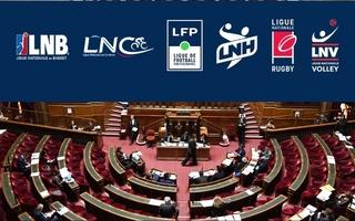 Le dispositif permettant de sécuriser les décisions des fédérations et ligues d'arrêter les championnatsadopté au Sénat