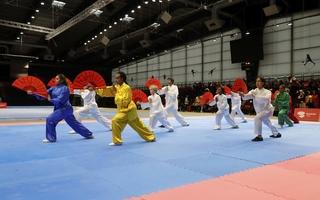 Enseignement des artsénergétiques et martiaux chinois: la mention générale «Wushu» validée par le Conseil d'État